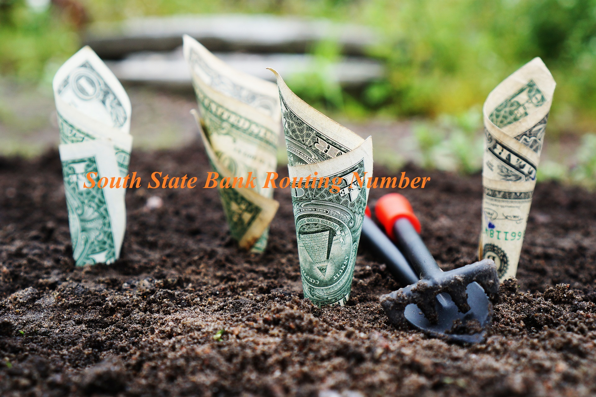 South State Bank Routing Number