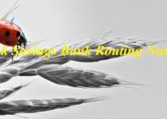 Kennebunk Savings Bank Routing Number