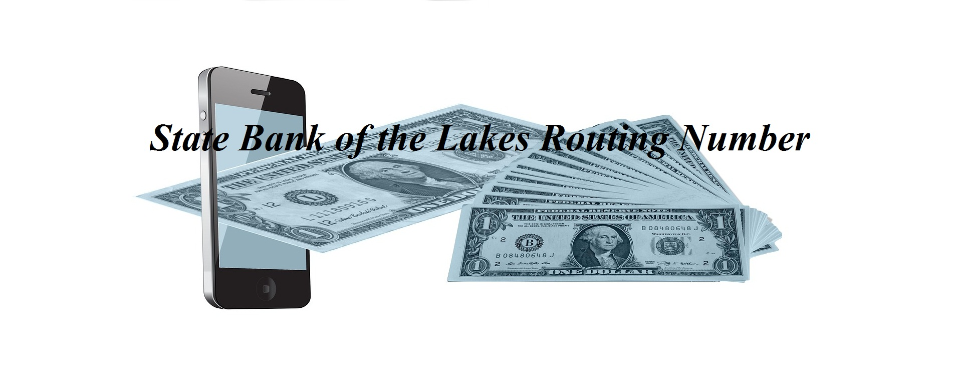 State Bank of the Lakes Routing Number