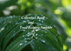 Columbus Bank and Trust Routing Number