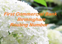 First Commercial Bank Birmingham Routing Number